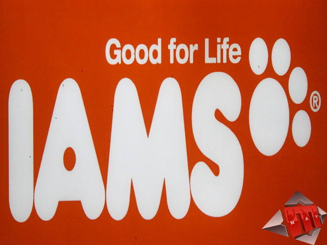 IAMS – Product Launch