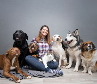 pets at home - a fashion event